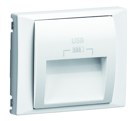 Cover Plate for Double USB Charger Type A with outlets at 20º
