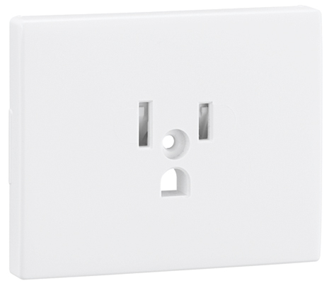 Safety Cover Plate for Earth Socket (USA NEMA Type)