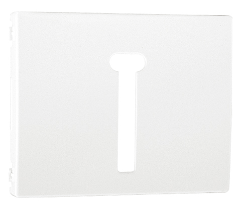 Cover Plate for T8 French Telephone Socket